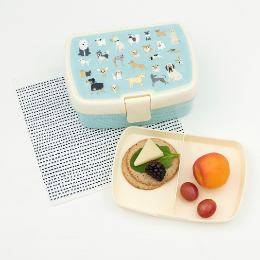 29121-best-show-lunch-box-tray-lifestyle